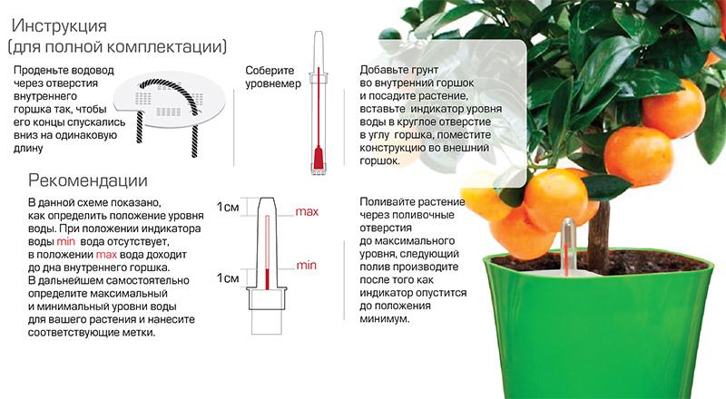 Автополив цветов в горшках